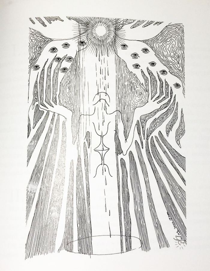Desen de Paula Şalar